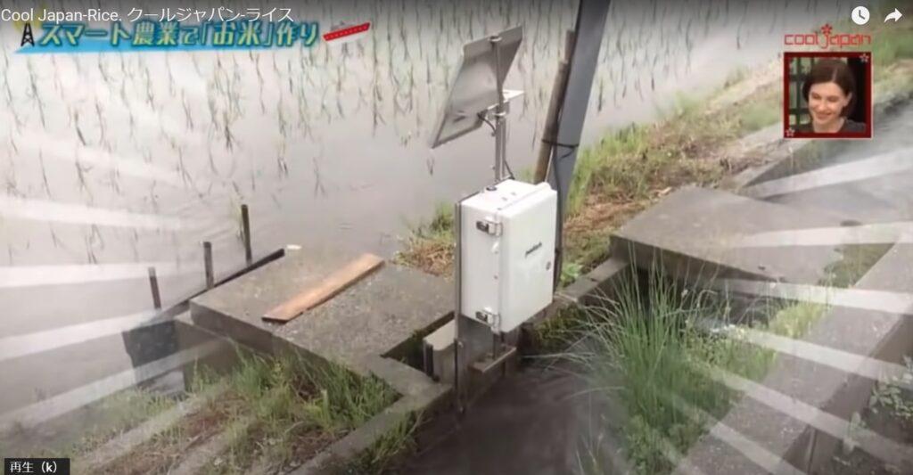 【メディア出演情報】