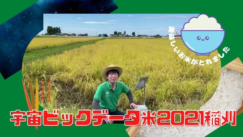 【YouTube】宇宙ビックデータ米の稲刈動画を公開しました